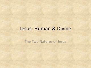 Jesus: Human & Divine