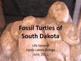 Fossil Turtles of  South Dakota