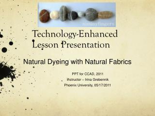 Technology-Enhanced Lesson Presentation