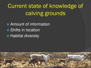 Current state of knowledge of  calving grounds