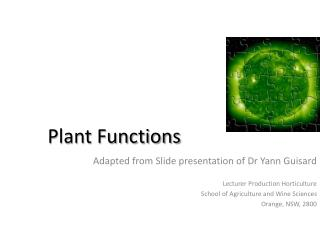 Plant Functions