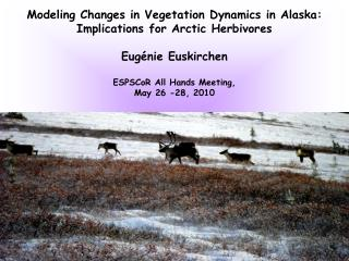 Modeling Changes  in Vegetation Dynamics in Alaska: Implications for Arctic Herbivores