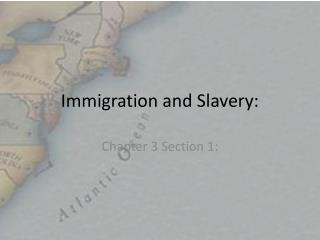 Immigration and Slavery: