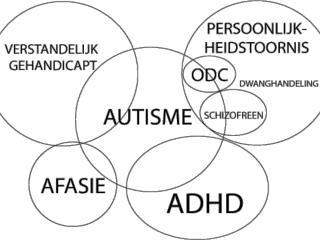 Onderwijs aan kinderen met  een autisme verwante stoornis