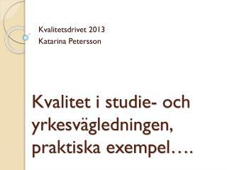 Kvalitet i studie- och yrkesvägledningen, praktiska exempel….