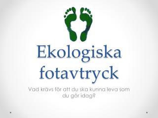 Ekologiska fotavtryck