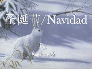 圣 诞 节 / Navidad