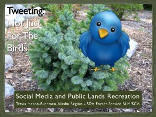 Tweeting: Not Just For The Birds