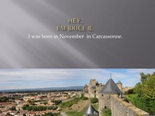 Hey, I�m  Brice B.