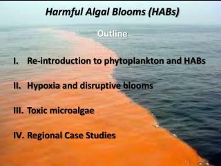 Harmful Algal Blooms (HABs)