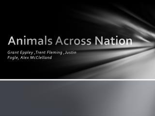Animals Across Nation