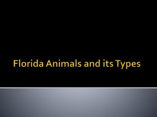 Florida Animals and its types