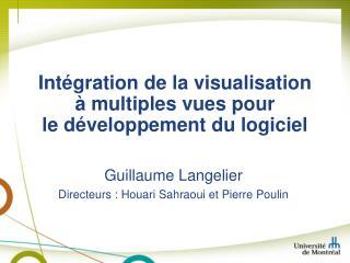 Intégration de la  visualisation à  multiples  vues pour le développement du  logiciel