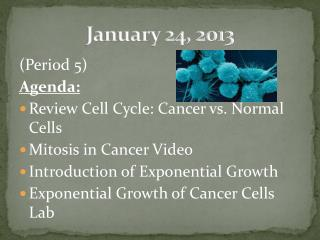 January  24,  2013