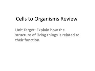 Cells to Organisms  Review