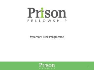 Sycamore Tree Programme
