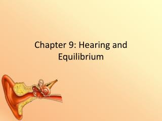 Chapter 9: Hearing and Equilibrium