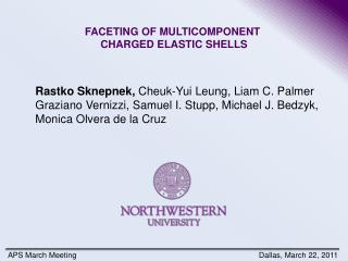 FACETING OF MULTICOMPONENT  CHARGED ELASTIC SHELLS
