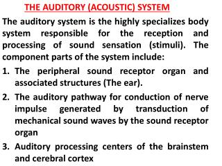 THE  AUDITORY (ACOUSTIC) SYSTEM