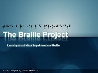The Braille Project