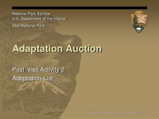 Adaptation Auction