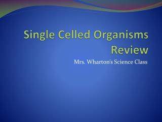 Single Celled Organisms Review