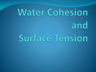 Water Cohesion  and  Surface Tension