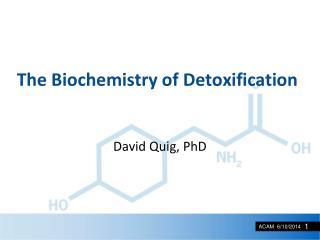 The Biochemistry of Detoxification
