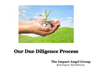 Our Due Diligence Process