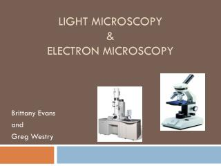 Light Microscopy & Electron Microscopy
