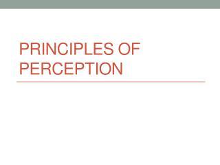 Principles of Perception