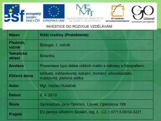 Nižší rostliny ( Protobionta )