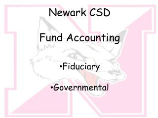 Newark CSD Fund Accounting Fiduciary Governmental