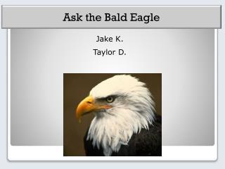 Jake K.