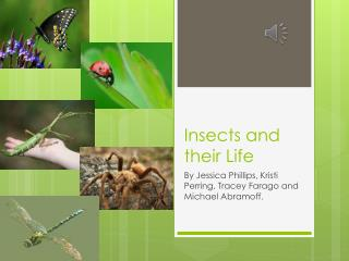 Insects and their Life