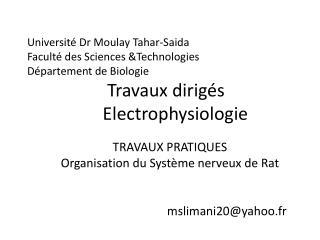TRAVAUX PRATIQUES Organisation du Système nerveux de Rat  mslimani20@yahoo.fr