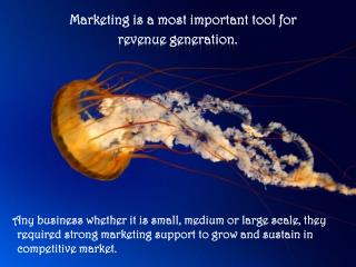 Marketing is a most important tool for revenue generation.