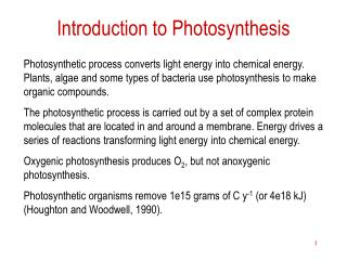 Introduction to Photosynthesis