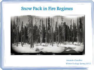 Snow Pack in Fire Regimes