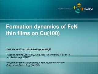 Formation dynamics of  FeN  thin films on Cu(100)