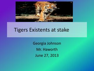 Tigers Existents at stake