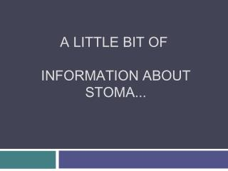 A little bit of  information about  stoma...