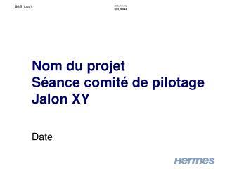 Nom  du  projet Séance comité  de  pilotage Jalon XY