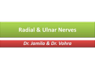 Radial & Ulnar Nerves
