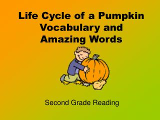 Life Cycle of a Pumpkin Vocabulary and Amazing Words