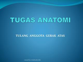TUGAS ANATOMI