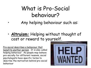 What is Pro-Social behaviour