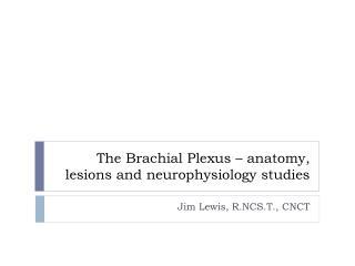 The Brachial Plexus – anatomy, lesions and  neurophysiology studies