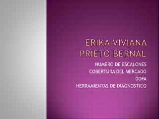 ERIKA VIVIANA PRIETO BERNAL