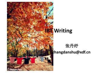 IBT Writing